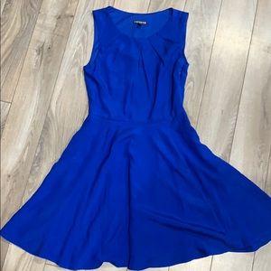 Beautiful Blue Express Skater Dress